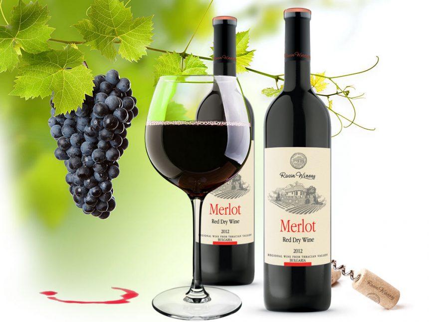 wine merlot